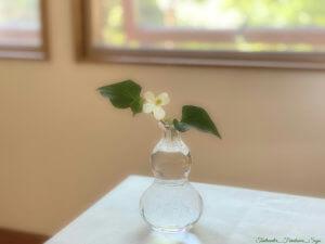 お花のある暮らし 季節の花