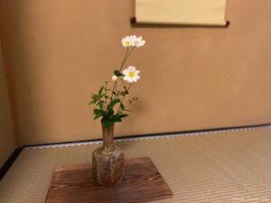 茶道 茶花 秋明菊